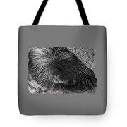 Animal T-shirt - B Tote Bag