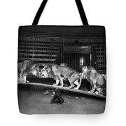 Animal Tamer Tote Bag