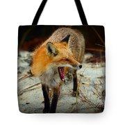 Animal - The Yawning Fox Tote Bag