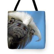 Animals 58 Tote Bag