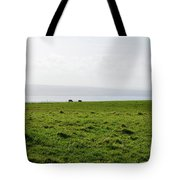 Animals Grazing In A Field Along The Cliffs Of Moher Tote Bag