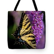 Anise Swallowtail Tote Bag