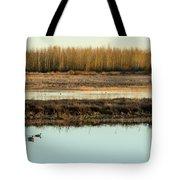 Ankeny Reflections Tote Bag