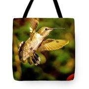 Anna Hummingbird  In Flight 1 Tote Bag