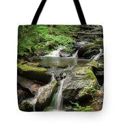 Anna Ruby Falls Tote Bag