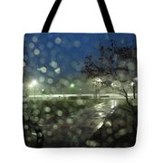 Annapolis After The Rain Tote Bag