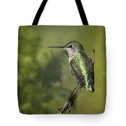 Anna's Hummingbird 3 Tote Bag