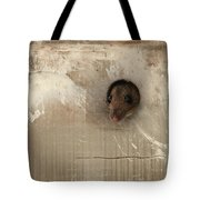 Anneliese Is Ready For Visit Tote Bag