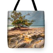 Annes Beach Tote Bag