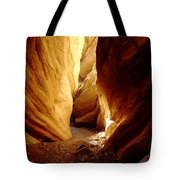 Anniversary Narrows Vertical Tote Bag