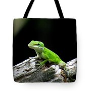 Anole 15 Tote Bag
