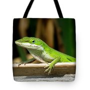 Anole 16 Tote Bag