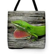 Anole 17 Tote Bag
