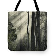 Anothen Tote Bag