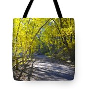 Another Fall In Philadelphia Tote Bag by Bill Cannon