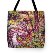 Another Look At Five Mile Mountain Tote Bag