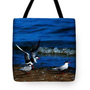 Another One Take A Tern Tote Bag