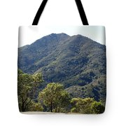 Another Side Of Tam 2 Tote Bag