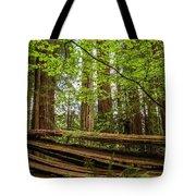 Another Split Redwood Tote Bag