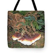 Another Toadstool Tote Bag