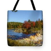 Another View Of Liscombe Falls Tote Bag