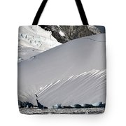 Antarctic Bliss  Tote Bag