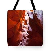 Antelope 12 Tote Bag