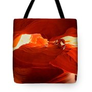 Antelope Aglow Tote Bag