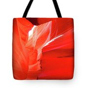 Antelope Butterfly Tote Bag