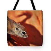 Antelope Ground Squirrel II Tote Bag