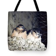 Antelope Island Birds Tote Bag