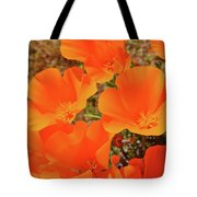 Antelope Valley Poppy Portrait Tote Bag