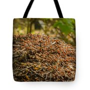 Anthill In Forest Tote Bag