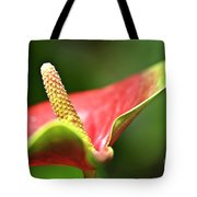 Anthurium Blossom Tote Bag