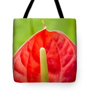 Anthurium Close-up Tote Bag