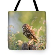 Anticipation - Little Owl Staring At Its Prey Tote Bag