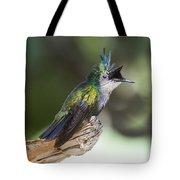 Antillean Crested Hummingbird On Stick Tote Bag