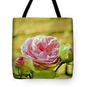 Antique Pink Rose Tote Bag