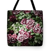 Antique Pink Roses Tote Bag