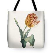 Antique Tulip Print Tote Bag