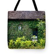 Antique Yard And Green Facade,  Dutch House Tote Bag