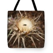 Antithesis - A Fly On A Thorn   Tote Bag