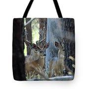 Antlers Galore Tote Bag