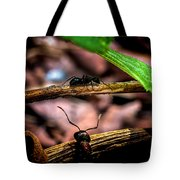 Ants Adventure Tote Bag