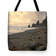 Anxiety Morning On The Ocean Shore. Tote Bag
