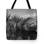 Anza-borrego Yuccas Tote Bag