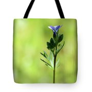 Aphid In The Leaves Tote Bag