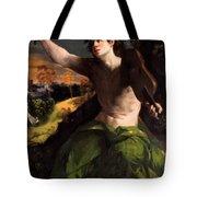 Apollo And Daphne 1524 Tote Bag