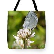 Appalachian Azure Tote Bag