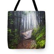Appalachian Light Tote Bag